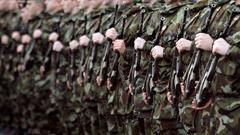 Careers New: The Defence Forces Recruitment